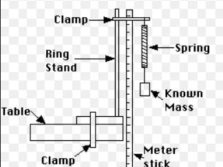 Investigating Hooke's law - Physics GCSE