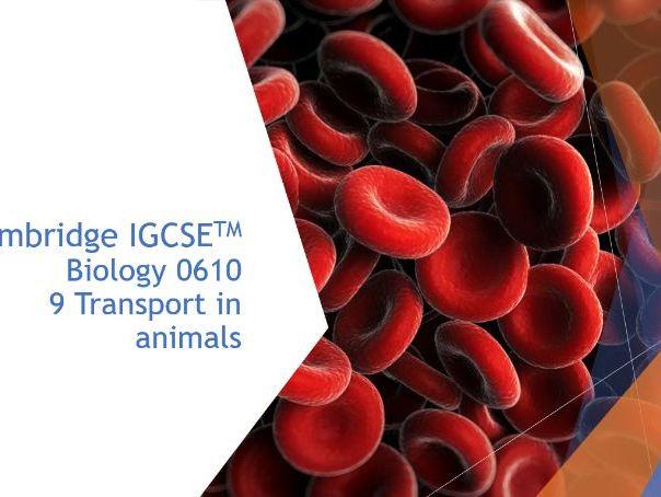 Cambridge IGCSE Biology 0610, 9 Transport in animals