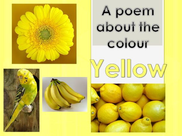Powerpoint Poem about the colour YELLOW. EYFS/KS1