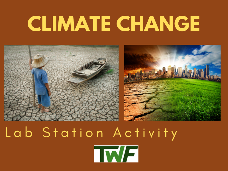 Climate Change Lab Station Activities
