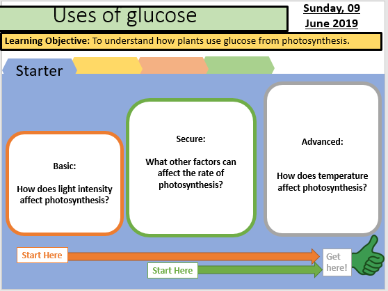 Uses of Glucose from photosynthesis