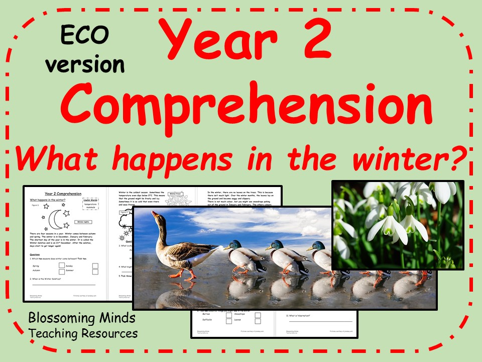 ECO Year 2 Reading Comprehension - What happens in the winter?