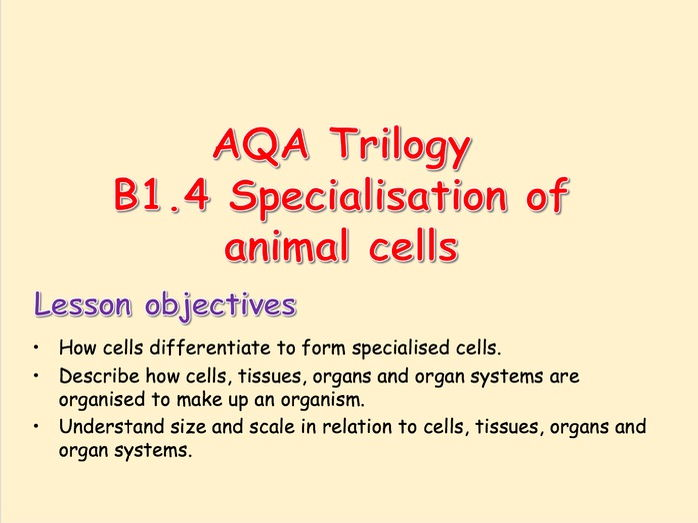 AQA Trilogy B1.4 Specialisation in Animal Cells