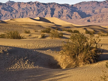 Why are tropical deserts hot and dry?