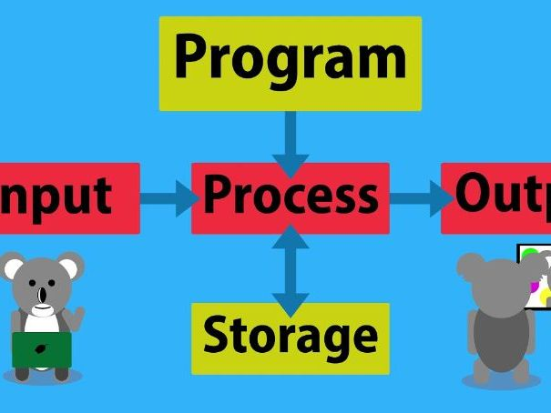 The Input Processing Output (IPO) Model