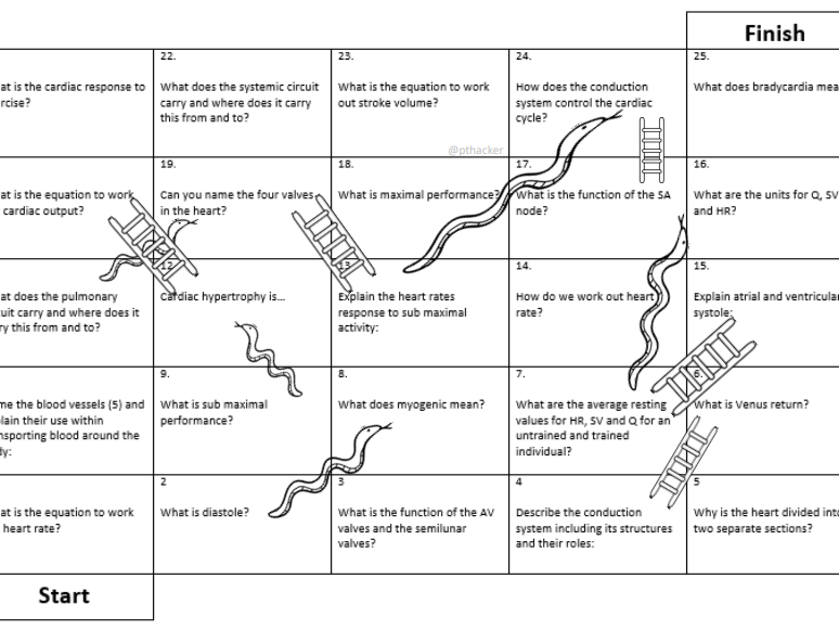 Cardiorespiratory System Snakes and Ladders Games A&P