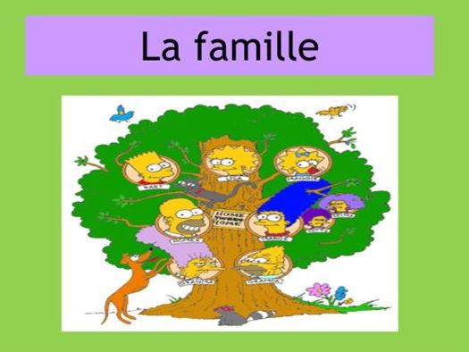 BUNDLE  - family and descriptions