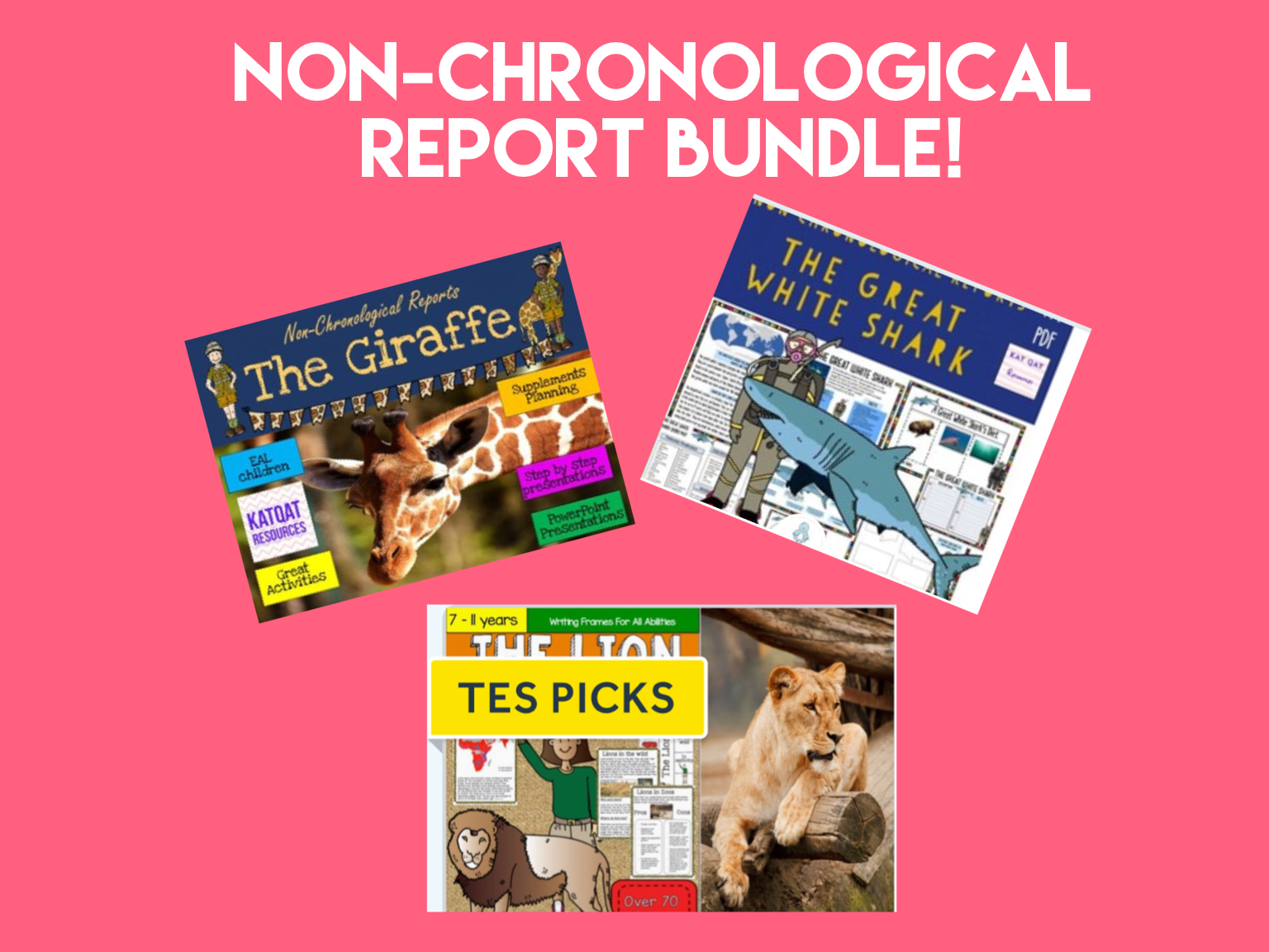 Non Chronological Report Writing Bundle
