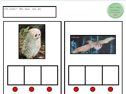 Owl Babies CVC words