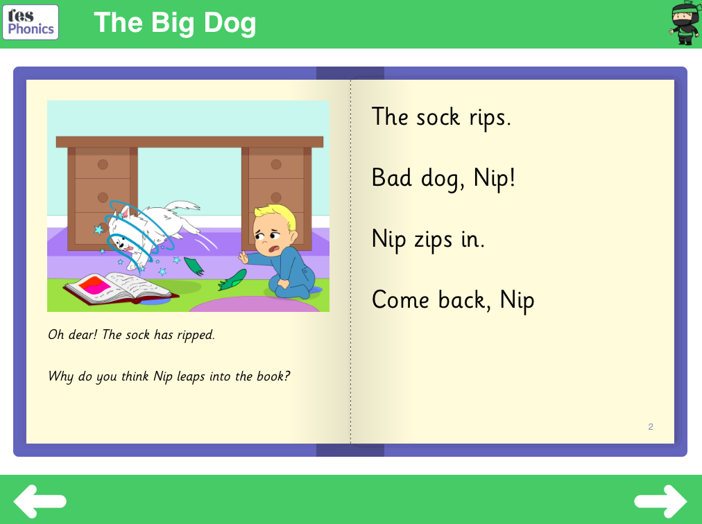 The Big Dog Reading Book - Sets 6-7 Phase 3