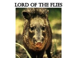 Lord Of the Flies Group Project