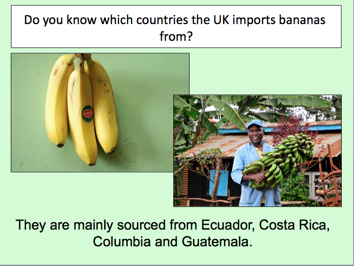 Understanding Trade - Investigating whether the banana trade is fair