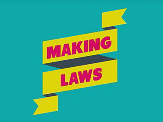 How laws are made, video