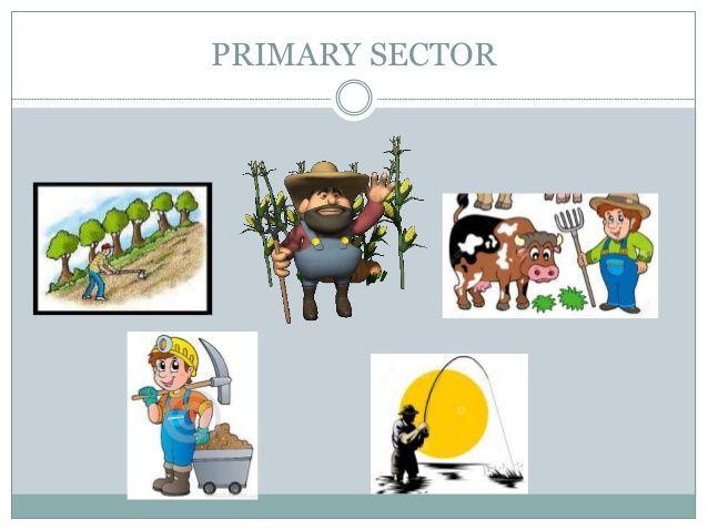 Primary Economic Activities - New Junior Cycle