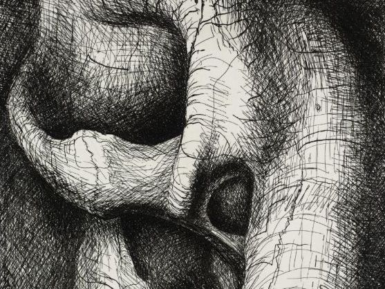 Henry Moore and Dorothee Loriquet - Natural Forms