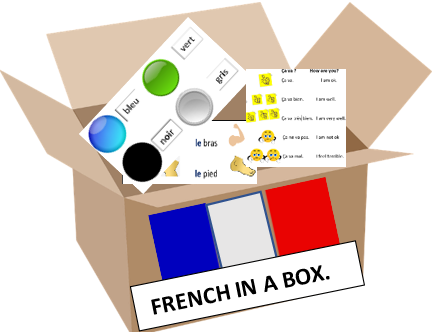 French descriptive sentence using nouns for clothes and colour adjectives.