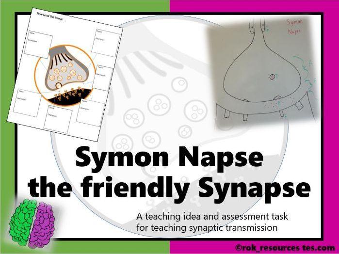 Synaptic Transmission worksheet