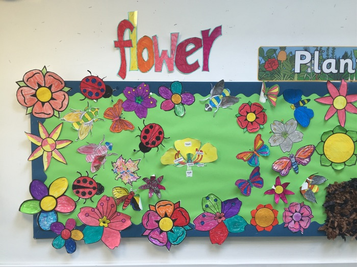 Science (Plants) - Identifying the parts of a plant