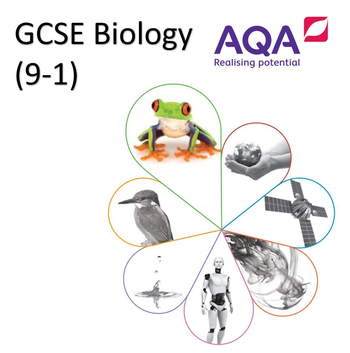 AQA GCSE Biology (9-1) Paper 1&2 Double Science Revision Summary Sheets