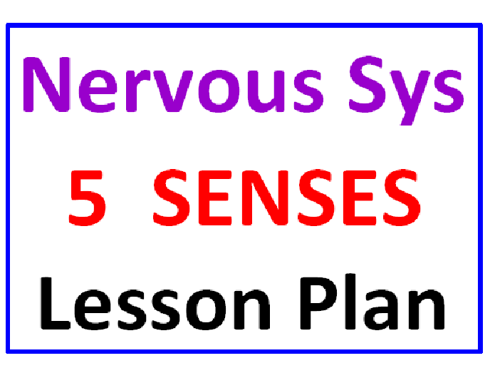 Lesson Plan Introduction to Nervous System and Five Senses
