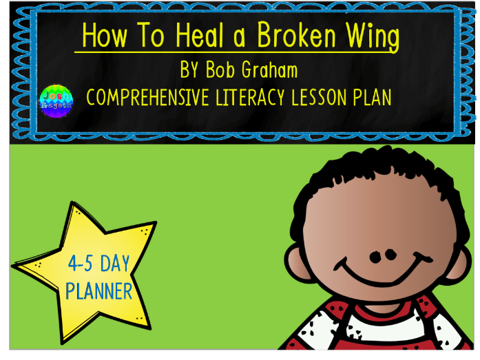 How to Heal a Broken Wing by Bob Graham 4-5 Day Lesson Plan