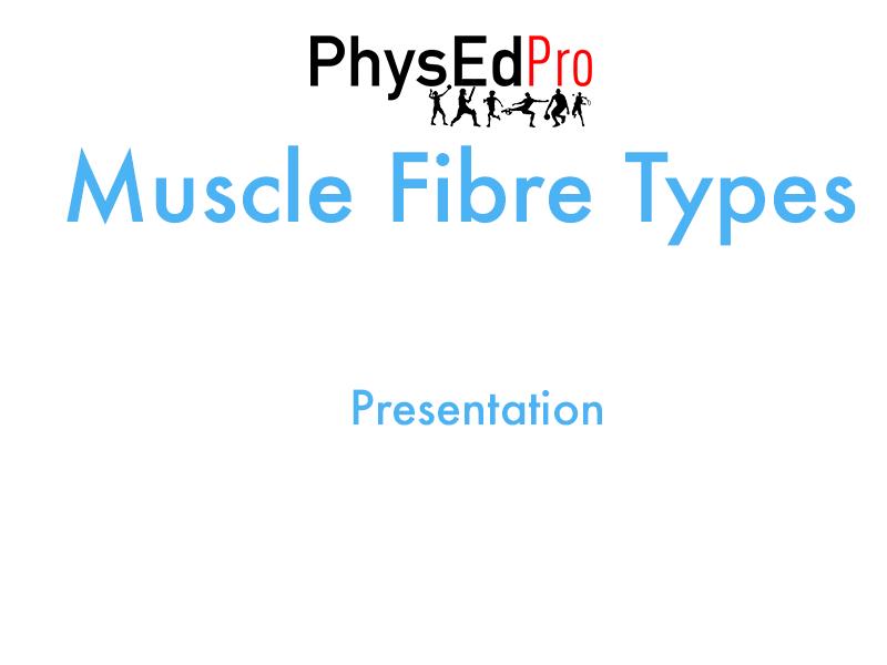 GCSE PE – Muscle Fibre Types Presentation – Powerpoint – IGCSE