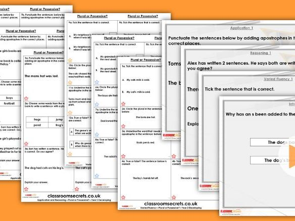 Grammar Year 2 Plural or Possessive? Spring Block 2 Step 4 Lesson Pack