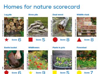 Homes for nature scorecard + Welsh bilingual version