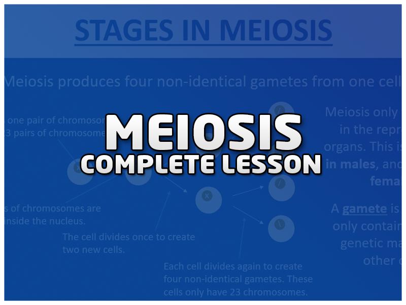 Meiosis and Fertilisation Lesson - AQA Biology GCSE (9-1)