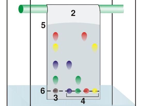 paper chromatography gcse chemistry tarsia