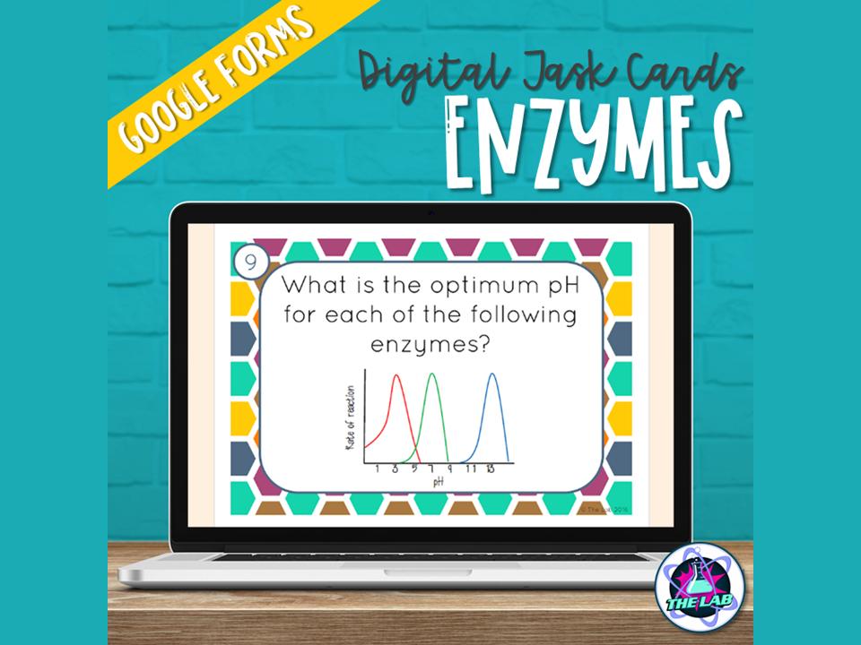 Enzymes Digital Task Cards