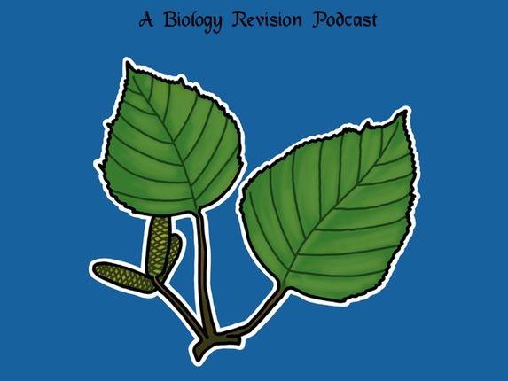 Plant Nutrition Part 1 (IGCSE/GCSE) worksheet