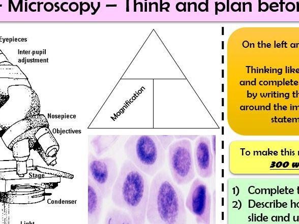 AQA Biology Trilogy (B1& B2 - 16 tasks) Quick Formative Assessments or Homework tasks