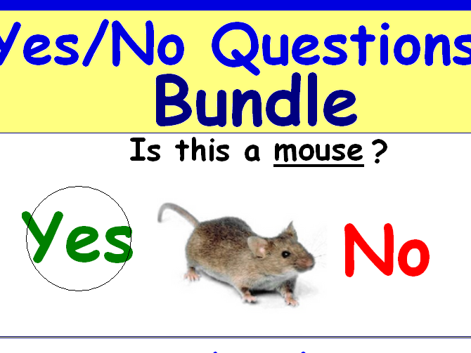 Yes - No Questions Bundle