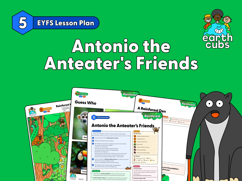 Antonio the Anteater's Friends in the Rainforest: EYFS Lesson Plan