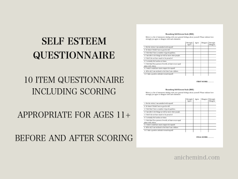 Self Esteem Questionnaire - Before & After