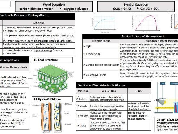 Biology Knowledge Organisers