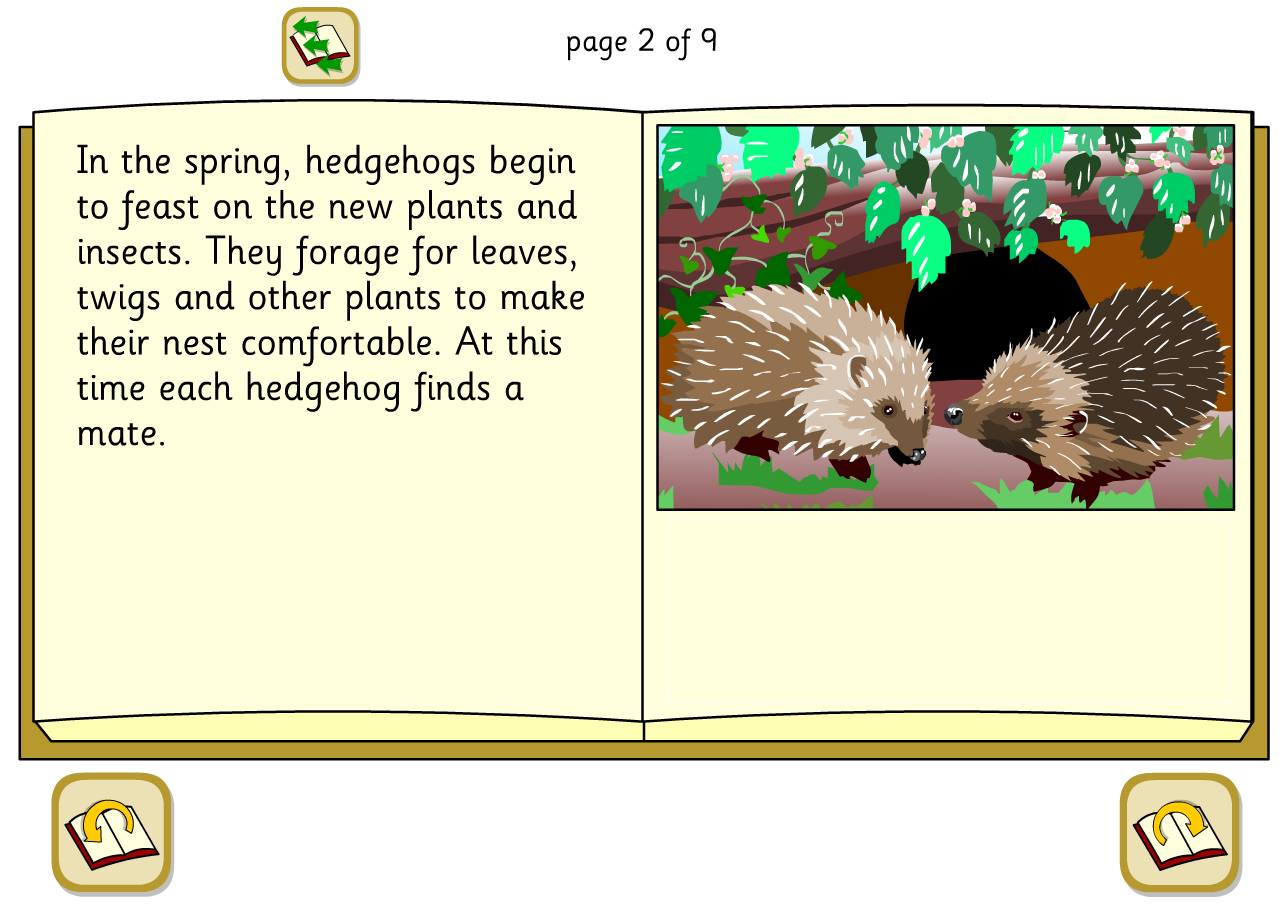 A Hedgehog's Year Lifecycle Interactive Explanation Book - KS2 Literacy
