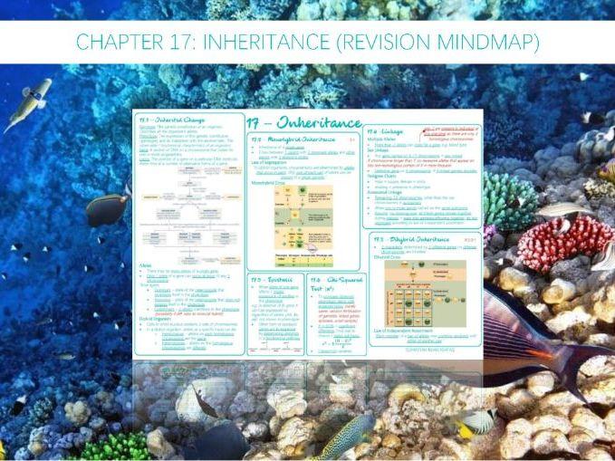 AQA A-Level - Biology : 17 - Inheritance (Revision Mindmap)
