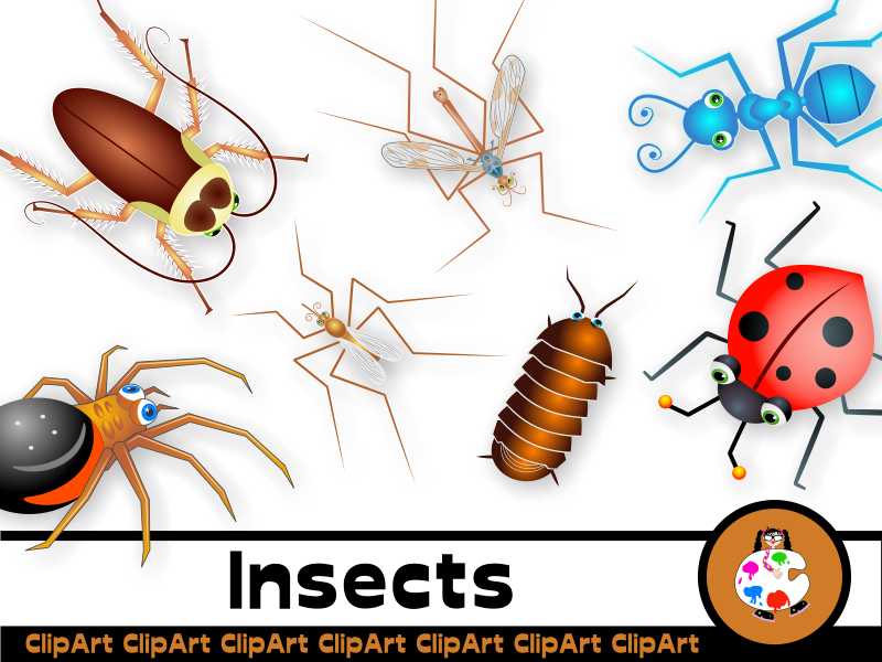 Cartoon Insect Clip Art Set