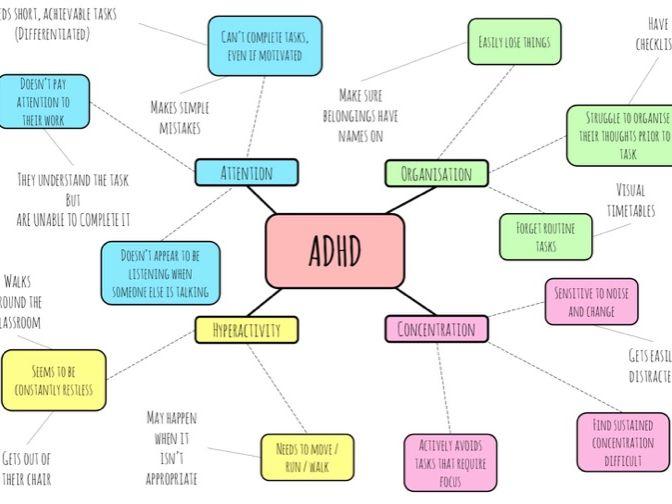 ADHD spider diagram