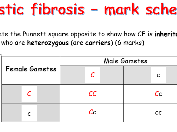 Punnet squares cystic fibrosis, polydactyl and gender