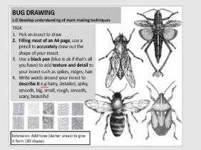 Cover lesson/lesson task - Bug pen marking making drawing