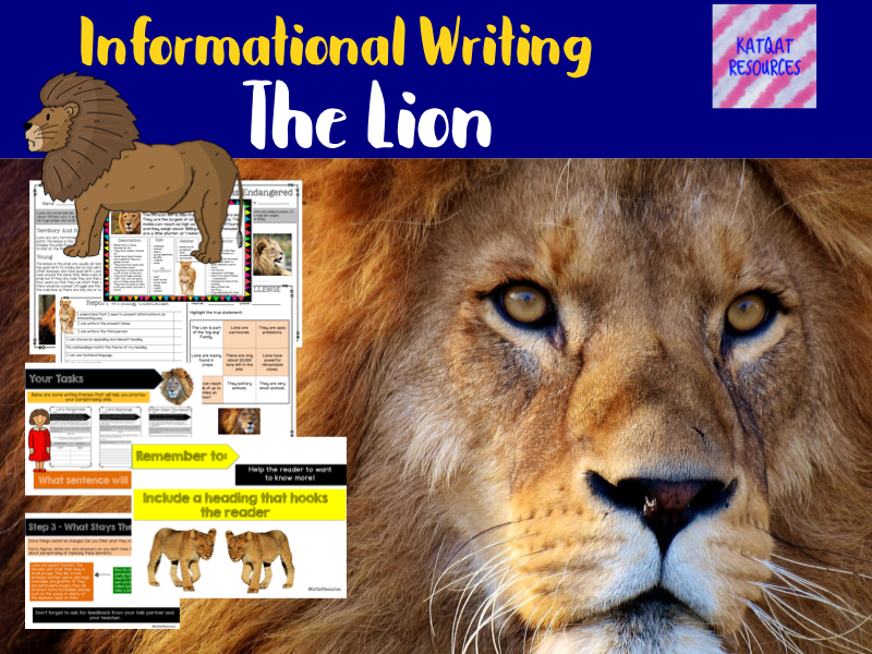 Non-Chronological Report Writing - The Lion