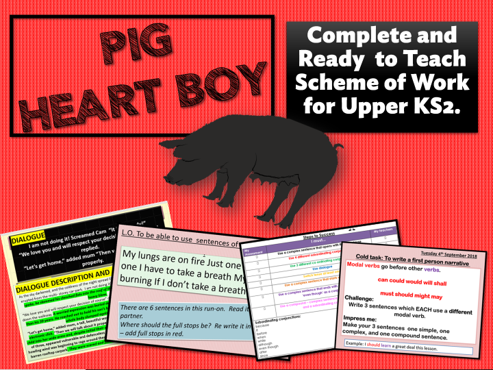 PIG HEART BOY - COMPLETE SOW -  YEAR 6