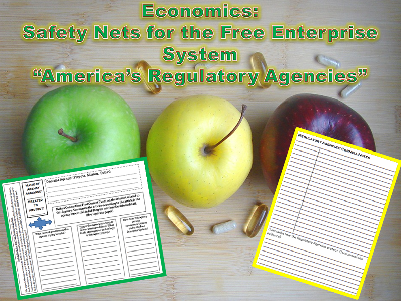 U.S. Economics: Safety Nets of the Free Enterprise System Student Activity