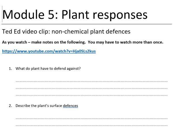 Plant Responses OCR Biology A Level