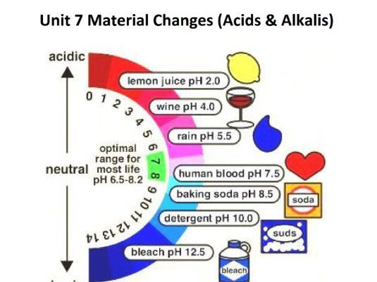 KS3 Checkpoint Science Material Changes (Acids & Alkalis) Student Workbook