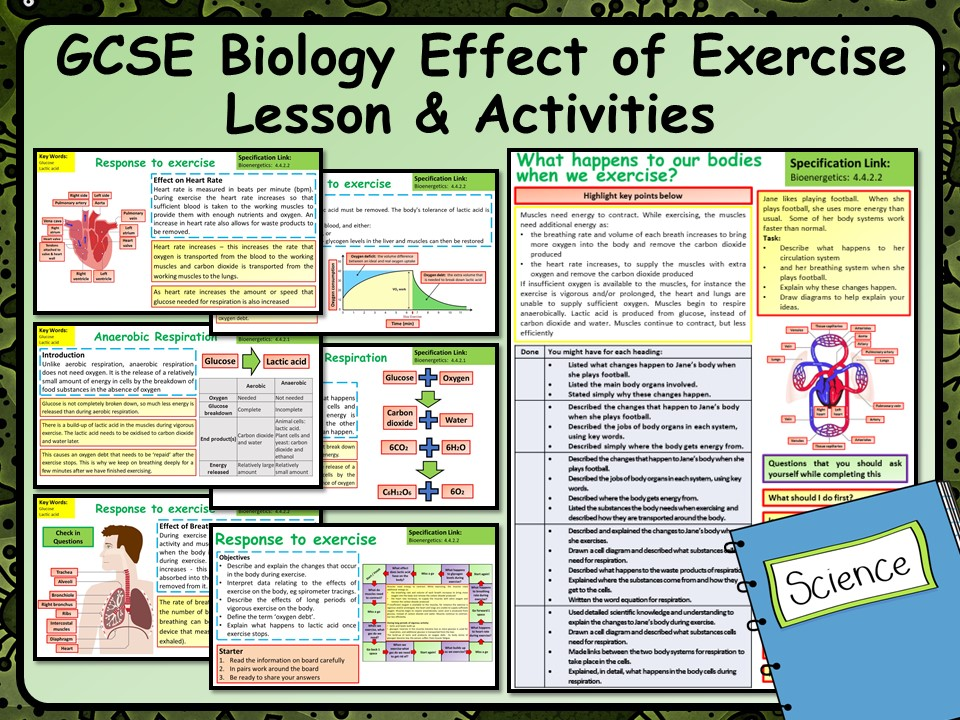 KS4 AQA GCSE Biology (Science) Effects of Exercise Lesson