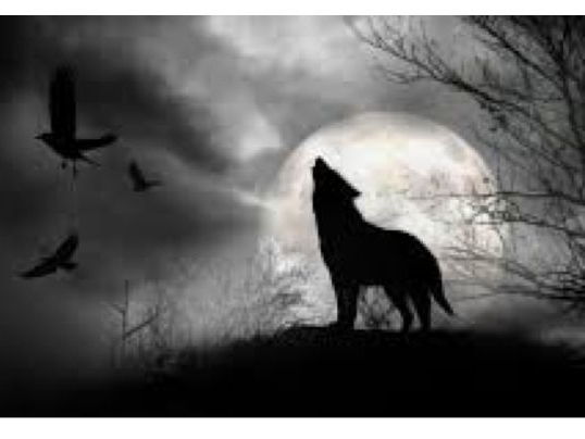Writing Prompt - The Wolf